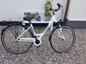Dame cykel lilleformat