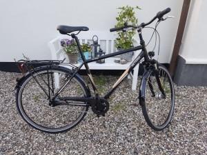 Herre cykel Lilleformat